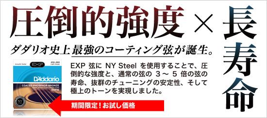 POP-EXPNY-Steel