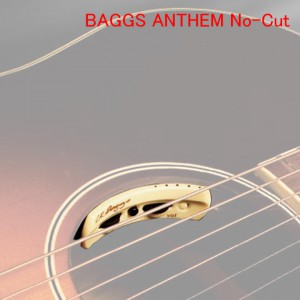 BAGGS ANTHEM No-Cut