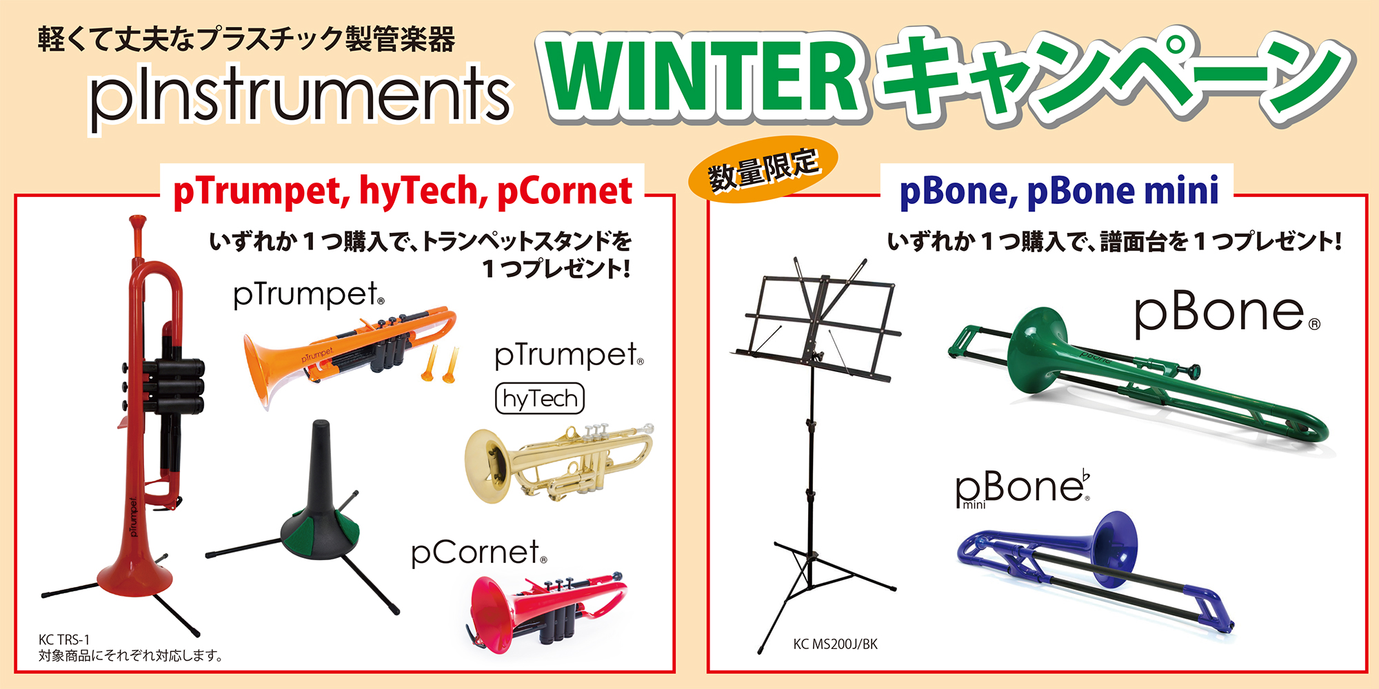 pInstruments_2019_winter_CP_banner